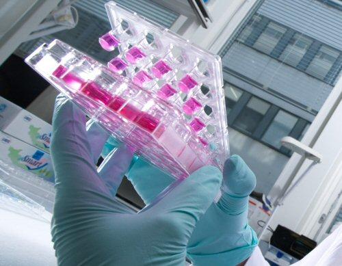 santé pharmacie biologie medical