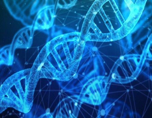 biotech medtech